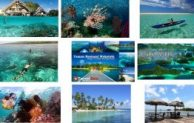 Go Indonesia :: Wakatobi The True Paradise For Divers