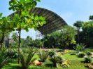 Go Indonesia :: Godong Ijo