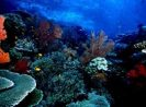 Go Indonesia :: North Sulawesi Tourism Is the Entrance of Go Indonesia to Sulawesi