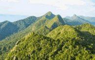 Go Indonesia :: Bukit Baka Bukit Raya The Lovely Mountain Peaks