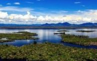 Go Indonesia :: The Exceptional Beauty Of Danau Sentarum