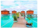 Go Indonesia :: Derawan Paradise Took You to the Serene of Go Indonesia