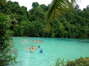 jungle-derawan-paradise