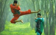 Go Indonesia :: Pencak Silat the Indonesian Martial Art You Can Enjoy and Learn