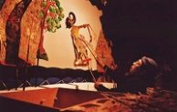 Go Indonesia :: Wayang Show The Heritage Of Indonesia